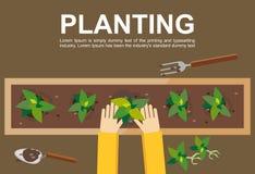 Plantera illustrationen plantera för begrepp Plana designillustrationbegrepp för att arbeta och att bruka och att skörda och att  Royaltyfri Fotografi