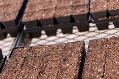 plantera krukar Arkivfoto