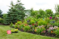 Plantera nya blommor i en färgrik trädgård royaltyfri bild
