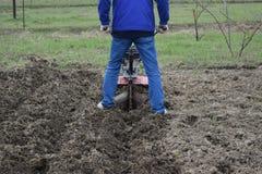 Plantera potatisar under gå-bak traktoren Arkivfoto