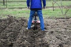 Plantera potatisar under gå-bak traktoren Royaltyfri Foto