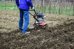 Plantera potatisar under gå-bak traktoren Royaltyfria Foton