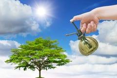 Plantera trädbegreppet för miljö för eco för jorddag bra arkivfoton