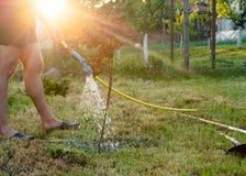 plantera treen Man att plantera ett träd i sommartid, yttersida i t Royaltyfri Fotografi