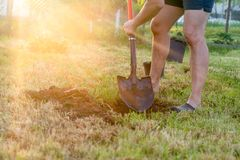 plantera treen Man att gräva ett hål i jordningen i sommartid, arkivfoton