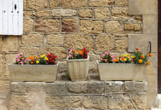 Planters with colourful flowers Royalty Free Stock Photos