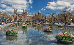 Planters filled with tulips  in the pond during the Tulip Festival in Amsterdam Royalty Free Stock Photo
