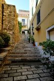 Planters on the flight of stairs. Flight of steps up to the house stock photo