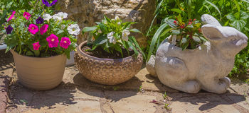Planters and Pots Following The Bunny. A collection of flower pots on a concrete stone patio Royalty Free Stock Photo