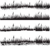 Plantes aquatiques réglées du roseau ou des cattails Vecteur de silhouette Images libres de droits