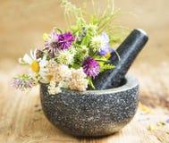 Plantes médicinales et herbes dans un mortier avec le pilon, alternative photo libre de droits