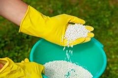 Plantes, pelouses, arbres et fleurs de fertilisation Jardinier dans les boules blanches d'engrais de prises de gants image stock