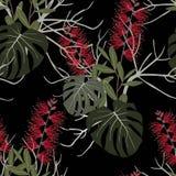 Plantes tropicales, fleurs de paradis et modèle sans couture de feuilles de monstera sur un fond noir Image stock