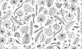Plantes tropicales, modèle sans couture illustration stock