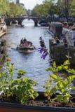 Plantes vertes près du canal avec un bateau pendant le jour Image stock