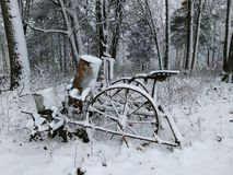 Planteur d'hiver Photo libre de droits