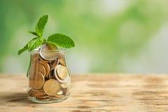 Plantez l'élevage dans le pot en verre avec des pièces de monnaie sur le fond brouillé Photo stock