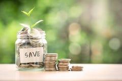 Plantez l'élevage dans le pot en verre de pièces de monnaie pour l'économie d'argent et Photo libre de droits