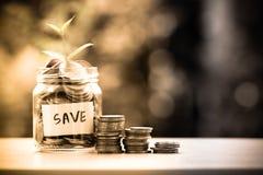 Plantez l'élevage dans le pot en verre de pièces de monnaie pour l'économie et les investmen d'argent Image stock
