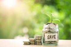 Plantez l'élevage dans le pot en verre de pièces de monnaie pour l'économie et les investmen d'argent Images libres de droits