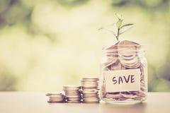 Plantez l'élevage dans le pot en verre de pièces de monnaie pour l'économie et les investmen d'argent Images stock