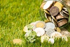 Plantez l'élevage dans le pot en verre de pièces de monnaie pour l'argent sur l'herbe verte Photographie stock libre de droits