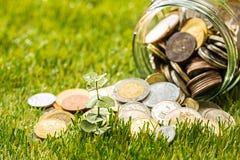 Plantez l'élevage dans le pot en verre de pièces de monnaie pour l'argent sur l'herbe verte Photo stock