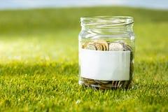 Plantez l'élevage dans le pot en verre de pièces de monnaie pour l'argent sur l'herbe verte Photos stock