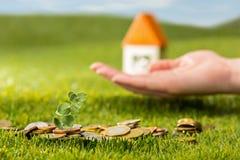 Plantez l'élevage dans le pot en verre de pièces de monnaie pour l'argent sur l'herbe verte Image libre de droits