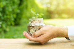Plantez l'élevage des pièces de monnaie d'argent dans le pot en verre Photos libres de droits
