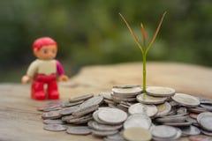 Plantez l'élevage des pièces de monnaie d'argent tenues par des mains du ` un s d'homme - busine Image libre de droits