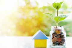 Plantez l'élevage des pièces de monnaie dans le pot en verre et l'origam de papier de maison Photos libres de droits
