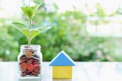 Plantez l'élevage des pièces de monnaie dans le pot en verre et l'origam de papier de maison Images stock
