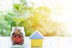 Plantez l'élevage des pièces de monnaie dans le pot en verre et l'origam de papier de maison Photo libre de droits