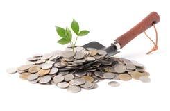 Plantez l'élevage hors des pièces en argent sur la truelle de jardinage d'isolement Photos stock
