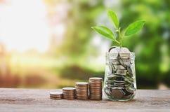 Plantez l'élevage sur des pièces de monnaie l'économie en verre de pot et d'argent de concept Images stock