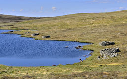 Plantiecrubs. Landscape showing east side of Nuckro Water, a loch on the island of Whalsay, Shetland, Scotland. The  loch  edge is dotted with small circular Stock Image