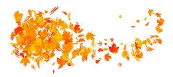 Plantilla abstracta de la bandera del otoño con las hojas coloridas EPS 10 ilustración del vector