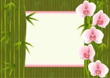 Plantilla con el bambú del extremo de las orquídeas Stock de ilustración