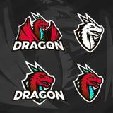 Plantilla creativa del logotipo del dragón Diseño de la mascota del deporte Insignias de la liga de la universidad, muestra asiát Fotos de archivo