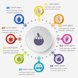 Plantilla de Infographic con los iconos de la fruta Foto de archivo libre de regalías