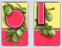 Plantilla de la bandera con las ramas de la fruta cítrica del árbol de cal Limones, naranjas y cales ilustración del vector