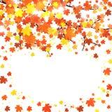Plantilla de la bandera del otoño con el espacio en blanco para su texto Fotografía de archivo