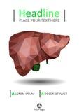 Plantilla de la cubierta de libro con el hígado humano realista con el conducto biliar Fotos de archivo