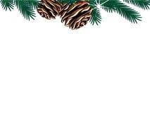 Plantilla de la Navidad con las ramitas y los conos en el fondo blanco, marco de la frontera del invierno en la página web libre illustration