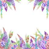 Plantilla de la tarjeta con el diseño floral; los elementos florales de la acuarela de un lupine florecen y otros wildflowers libre illustration