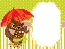 Plantilla de la tarjeta del vector con los búhos lindos Búhos del vector libre illustration