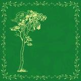 Plantilla de la tarjeta del vintage con el árbol libre illustration