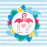 Plantilla de la tarjeta de felicitación del día del ` s de la tarjeta del día de San Valentín foto de archivo libre de regalías