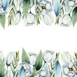 Plantilla de la tarjeta de las fronteras blancas de las flores de la anémona de la acuarela libre illustration